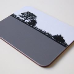 Pool-in-wharfedale Coaster