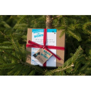 Christmas Bake at Home Dog Biscuit Kit Cranberry flavour