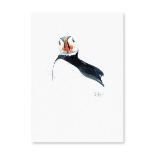 Inky Puffin Unframed Print