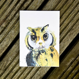 Inky Owl Eco-friendly A6 Notebook