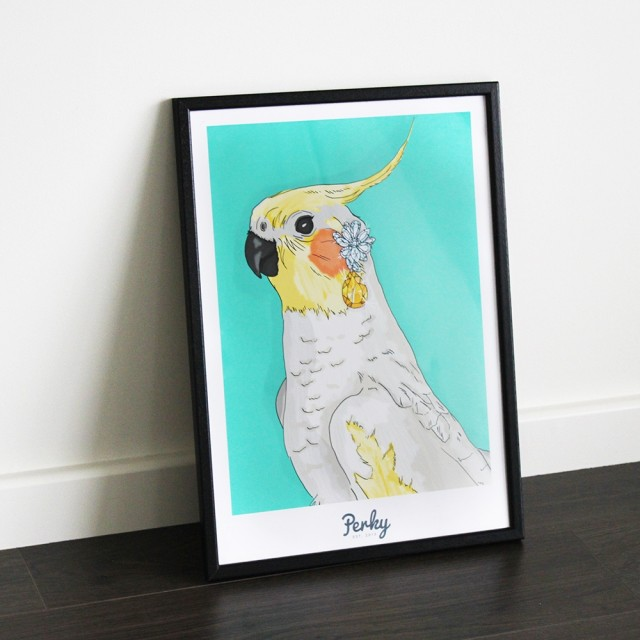 Cockatiel Wall Art A2 (unframed)