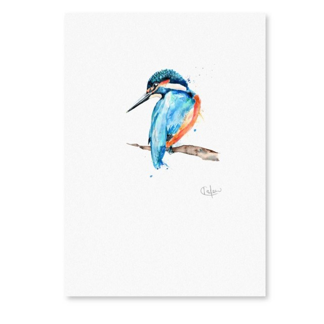 Inky Kingfisher Unframed Print