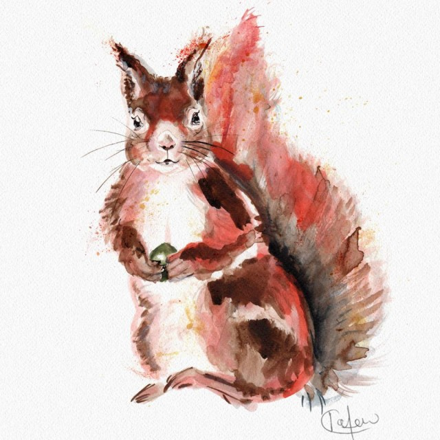 Inky Squirrel Unframed Print
